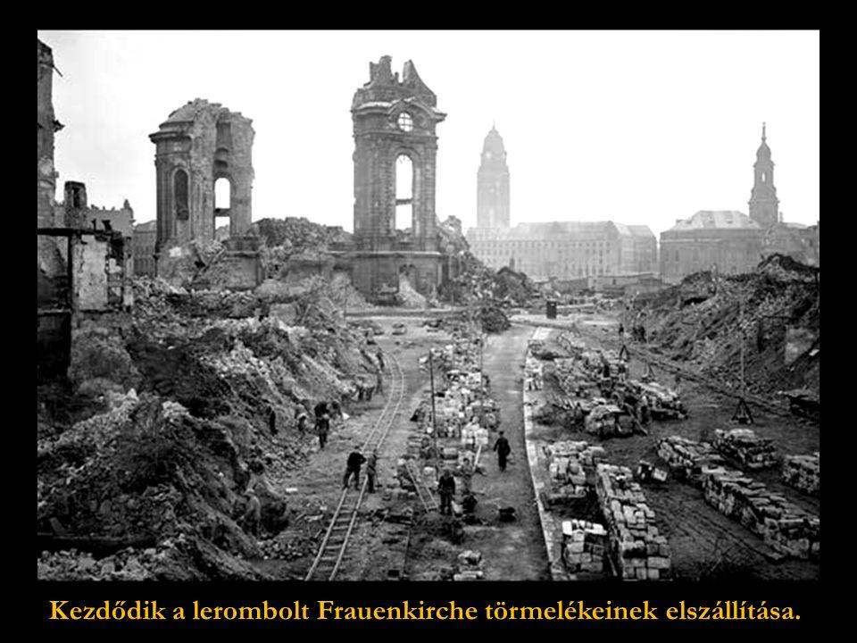 Szürreális kép:Birkák legelnek az egykori Frauenkirche mellett …