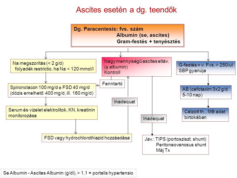 Dg. Paracentesis: fvs. szám Albumin (se, ascites) Gram-festés + tenyésztés Na megszorítás (< 2 g/d) folyadék restrictio, ha Na < 120 mmol/l Spironolac