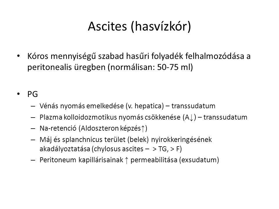 Ascites (hasvízkór) Kóros mennyiségű szabad hasűri folyadék felhalmozódása a peritonealis üregben (normálisan: 50-75 ml) PG – Vénás nyomás emelkedése