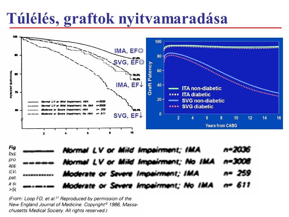 Túlélés, graftok nyitvamaradása +Litle papers IMA, EF SVG, EF  IMA, EF  SVG, EF