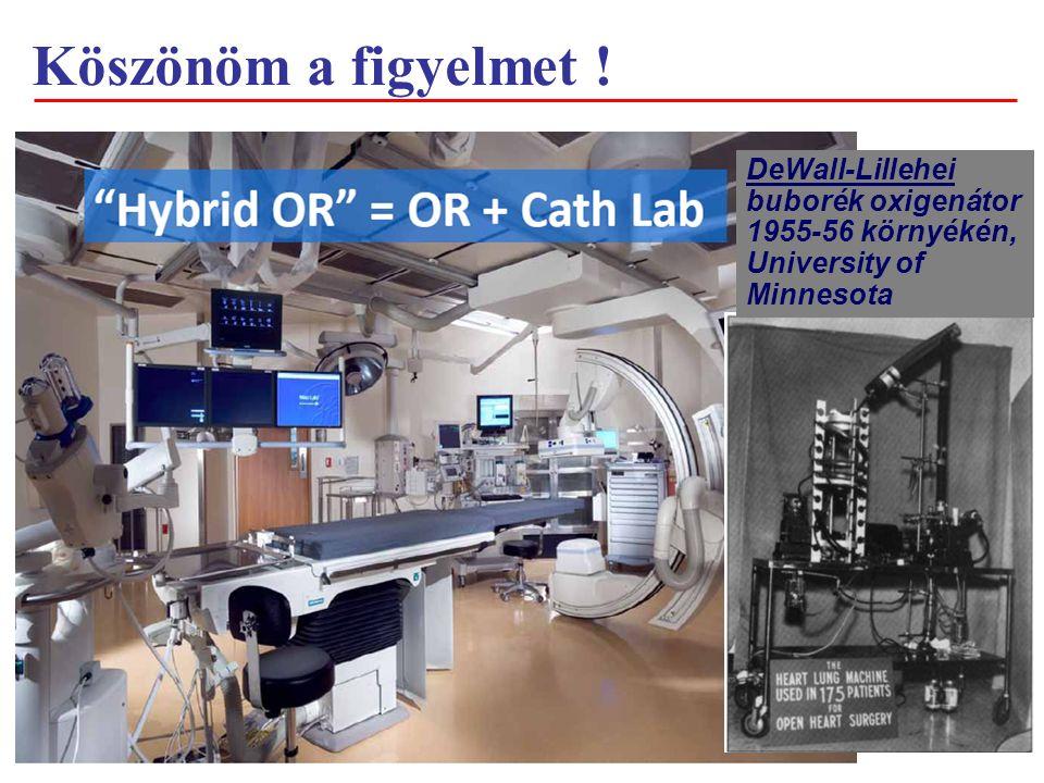 DeWall-Lillehei buborék oxigenátor 1955-56 környékén, University of Minnesota Köszönöm a figyelmet !