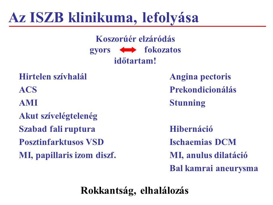 Az ISZB klinikuma, lefolyása Koszorúér elzáródás gyorsfokozatos időtartam.