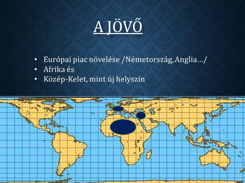 A JÖVŐ Európai piac növelése /Németország, Anglia…/ Afrika és Közép-Kelet, mint új helyszín