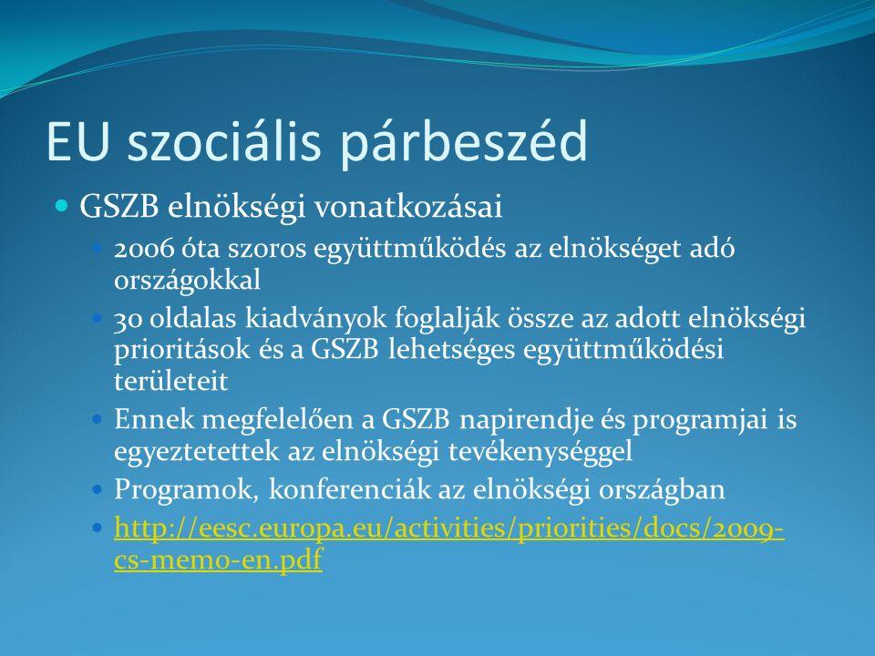 Lehetőségek, feltételek, teendők Együttműködési csatornák azonosítása (közösségi és magyar) Közösségi: Gazdasági és Szociális Bizottság magyar tagokon keresztül Befolyásolni lehet az ECOSOC és az elnökség együttműködését