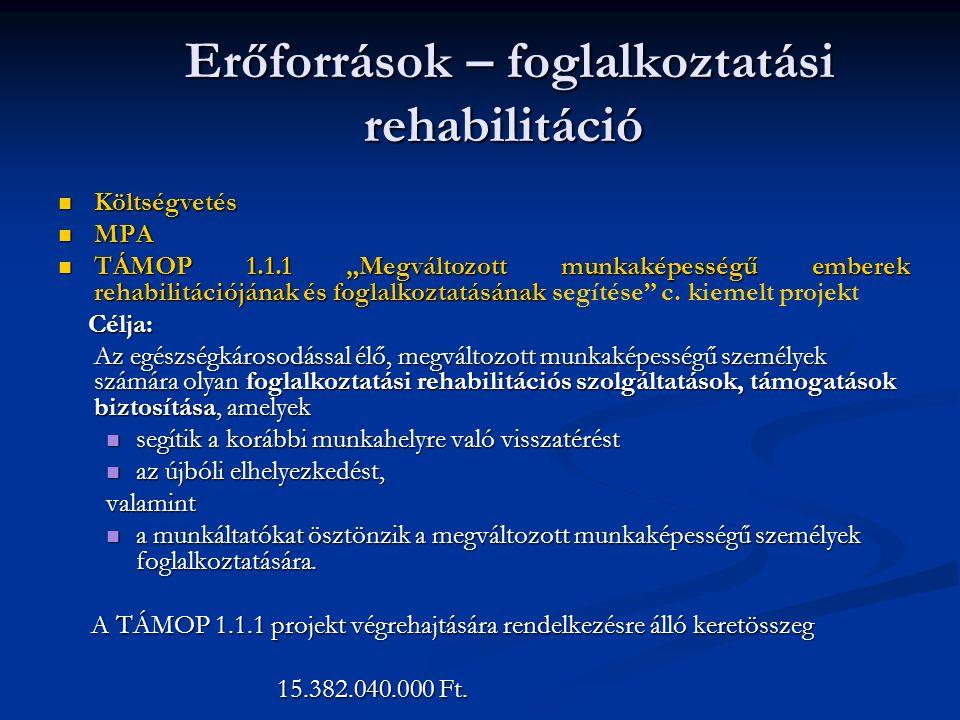 """Erőforrások – foglalkoztatási rehabilitáció Erőforrások – foglalkoztatási rehabilitáció Költségvetés Költségvetés MPA MPA TÁMOP 1.1.1 """"Megváltozott munkaképességű emberek rehabilitációjának és foglalkoztatásának TÁMOP 1.1.1 """"Megváltozott munkaképességű emberek rehabilitációjának és foglalkoztatásának segítése c."""