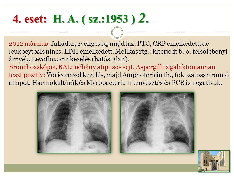 4.eset: H. A. ( sz.:1953 ) 2.