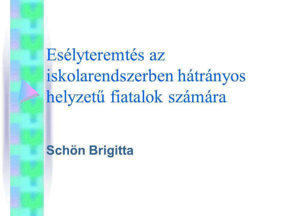 Esélyteremtés az iskolarendszerben hátrányos helyzetű fiatalok számára Schön Brigitta