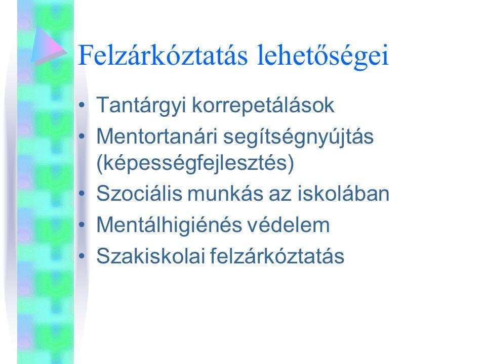 Felzárkóztatás lehetőségei Tantárgyi korrepetálások Mentortanári segítségnyújtás (képességfejlesztés) Szociális munkás az iskolában Mentálhigiénés védelem Szakiskolai felzárkóztatás