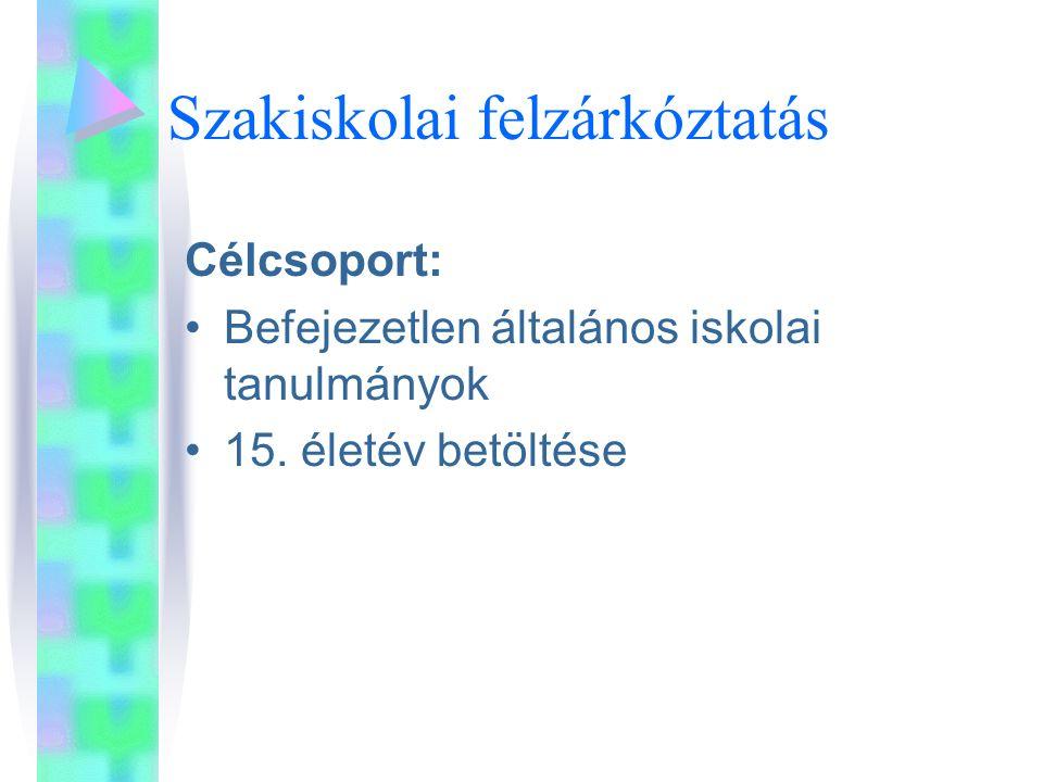 Szakiskolai felzárkóztatás Célcsoport: Befejezetlen általános iskolai tanulmányok 15.