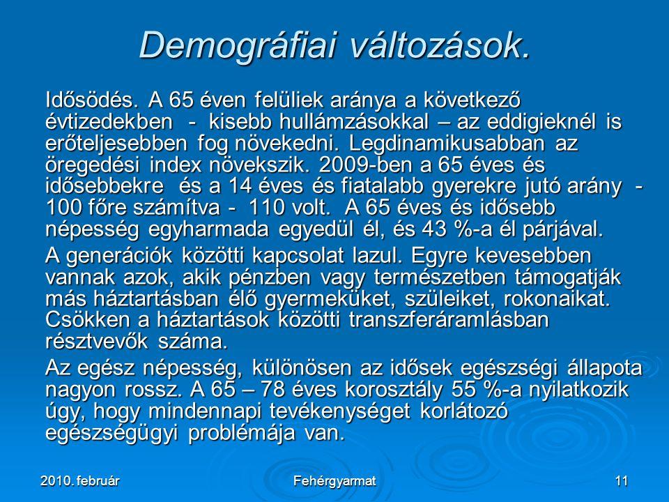 2010. februárFehérgyarmat11 Demográfiai változások.