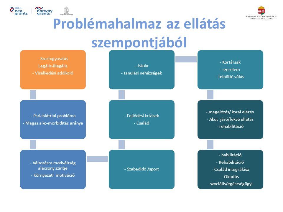 Problémahalmaz az ellátás szempontjából - Szerfogyasztás Legális-illegális - Viselkedési addikció - Pszichiátriai probléma - Magas a ko-morbiditás aránya - Változásra motiváltság alacsony szintje - Környezeti motiváció - Szabadidő /sport - Fejlődési krízisek - Család - Iskola - tanulási nehézségek - Kortársak - szerelem - felnőtté válás - megelőzés/ korai elérés - Akut járó/fekvő ellátás - rehabilitáció - habilitáció - Rehabilitáció - Család integrálása - Oktatás - szociális/egészségügyi