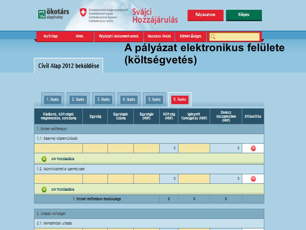 A pályázat elektronikus felülete (költségvetés)