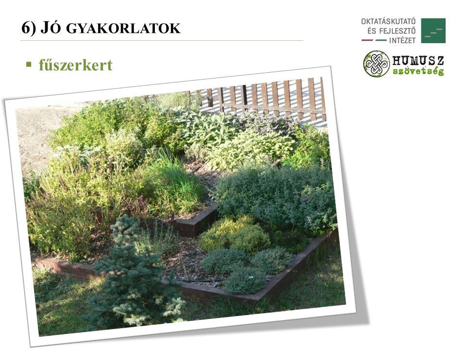 6) J Ó GYAKORLATOK  fűszerkert