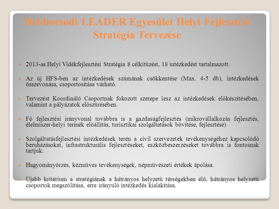 Dél-borsodi LEADER Egyesület Helyi Fejlesztési Stratégia Tervezése  2013-as Helyi Vidékfejlesztési Stratégia 8 célkitűzést, 18 intézkedést tartalmazott.