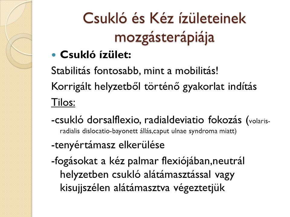 Csukló és Kéz ízületeinek mozgásterápiája Csukló ízület: Stabilitás fontosabb, mint a mobilitás.