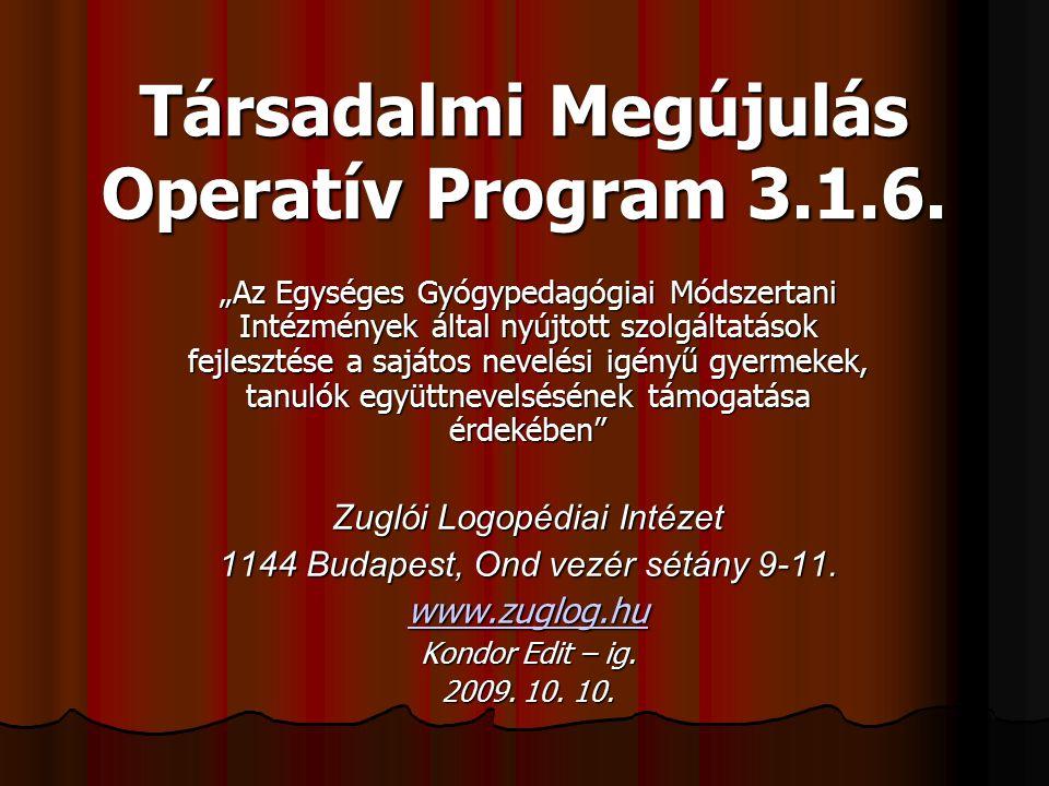 Társadalmi Megújulás Operatív Program 3.1.6.
