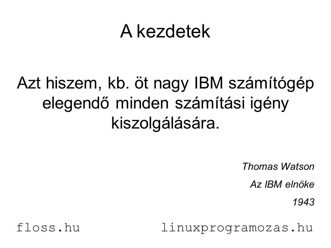 A kezdetek Azt hiszem, kb. öt nagy IBM számítógép elegendő minden számítási igény kiszolgálására.