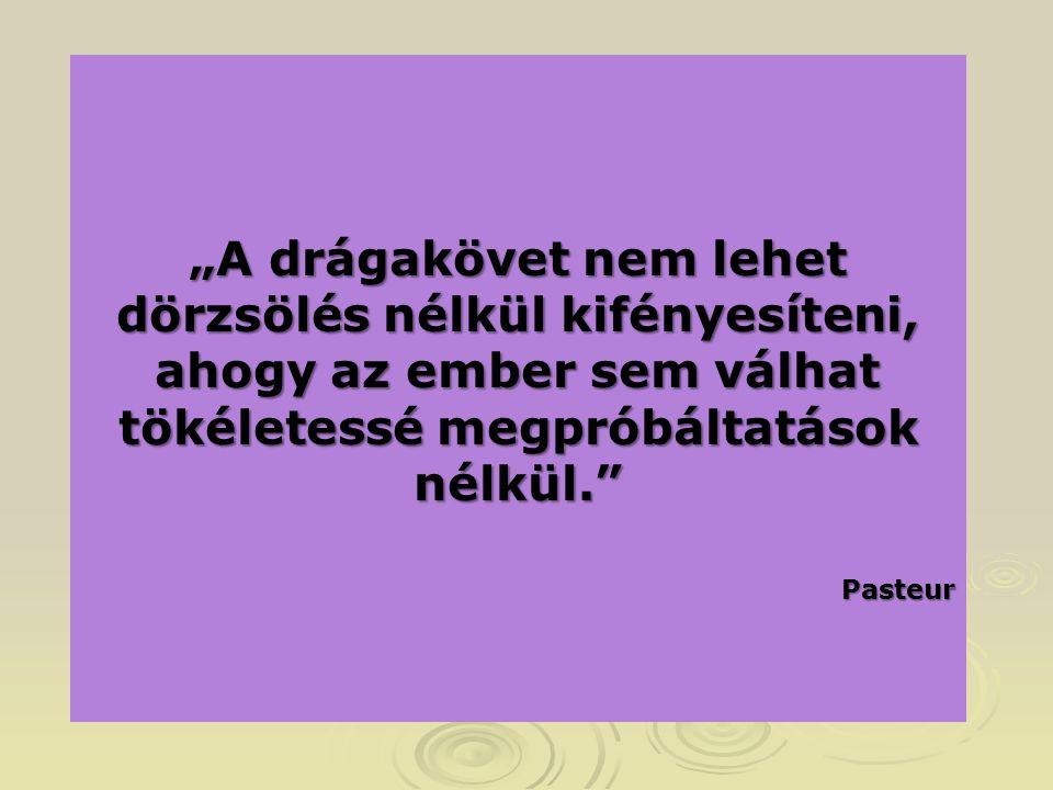 """""""A drágakövet nem lehet dörzsölés nélkül kifényesíteni, ahogy az ember sem válhat tökéletessé megpróbáltatások nélkül. Pasteur"""