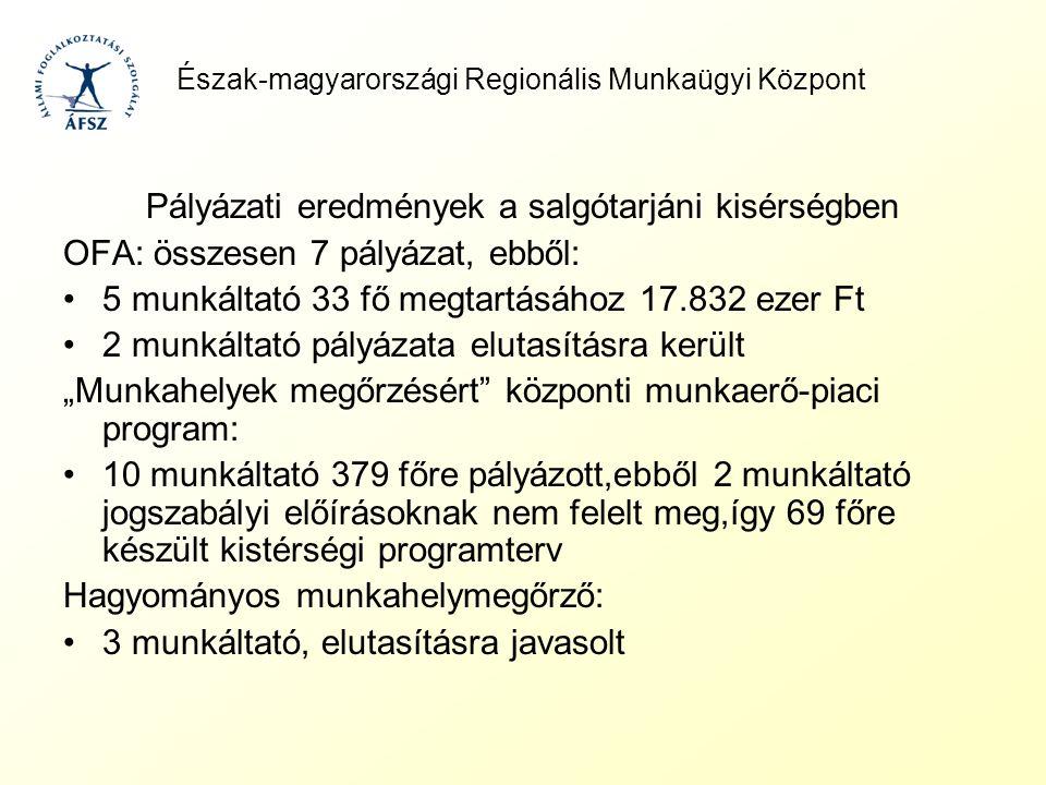 Észak-magyarországi Regionális Munkaügyi Központ Pályázati eredmények a salgótarjáni kisérségben OFA: összesen 7 pályázat, ebből: 5 munkáltató 33 fő m