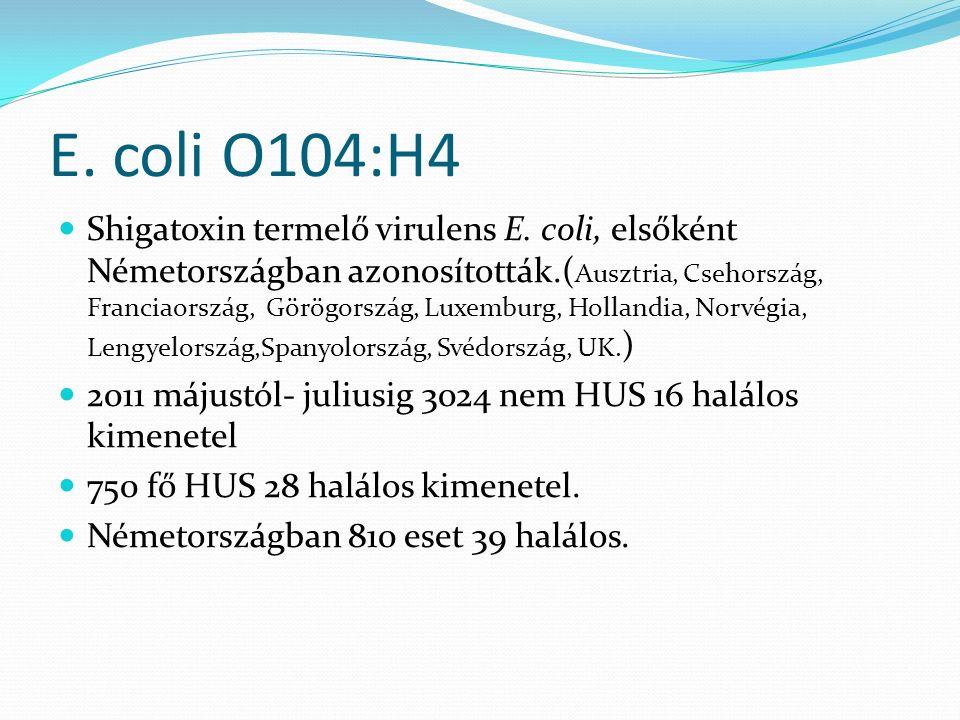 E. coli O104:H4 Shigatoxin termelő virulens E. coli, elsőként Németországban azonosították.( Ausztria, Csehország, Franciaország, Görögország, Luxembu