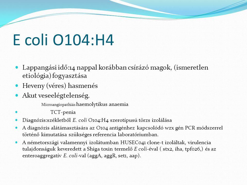 E coli O104:H4 Lappangási idő:14 nappal korábban csírázó magok, (ismeretlen etiológia) fogyasztása Heveny (véres) hasmenés Akut veseelégtelenség. Micr