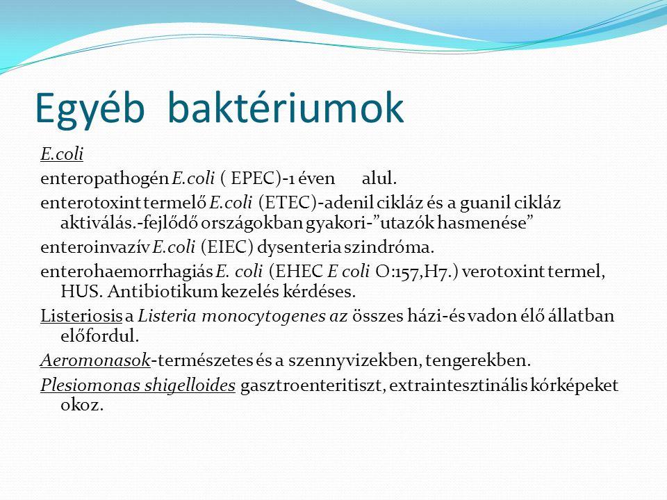 Egyéb baktériumok E.coli enteropathogén E.coli ( EPEC)-1 éven alul. enterotoxint termelő E.coli (ETEC)-adenil cikláz és a guanil cikláz aktiválás.-fej