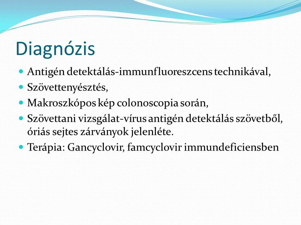 Diagnózis Antigén detektálás-immunfluoreszcens technikával, Szövettenyésztés, Makroszkópos kép colonoscopia során, Szövettani vizsgálat-vírus antigén