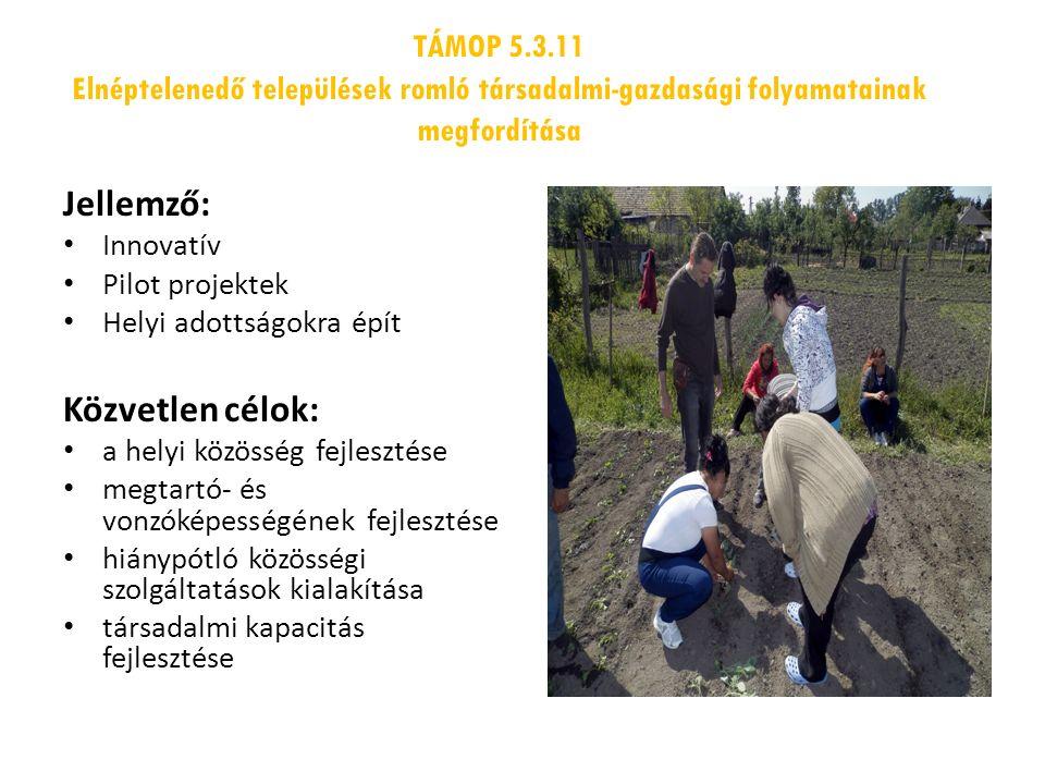 TÁMOP 5.3.11 Elnéptelenedő települések romló társadalmi-gazdasági folyamatainak megfordítása Jellemző: Innovatív Pilot projektek Helyi adottságokra épít Közvetlen célok: a helyi közösség fejlesztése megtartó- és vonzóképességének fejlesztése hiánypótló közösségi szolgáltatások kialakítása társadalmi kapacitás fejlesztése