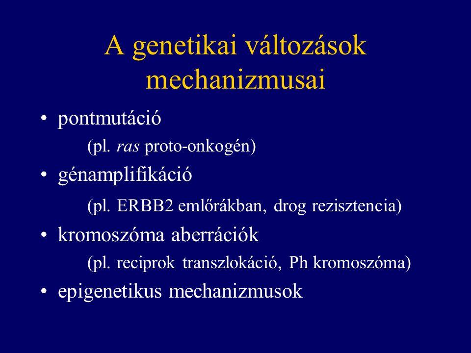 A genetikai változások mechanizmusai pontmutáció (pl.