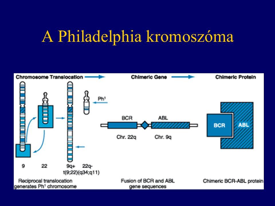 A Philadelphia kromoszóma