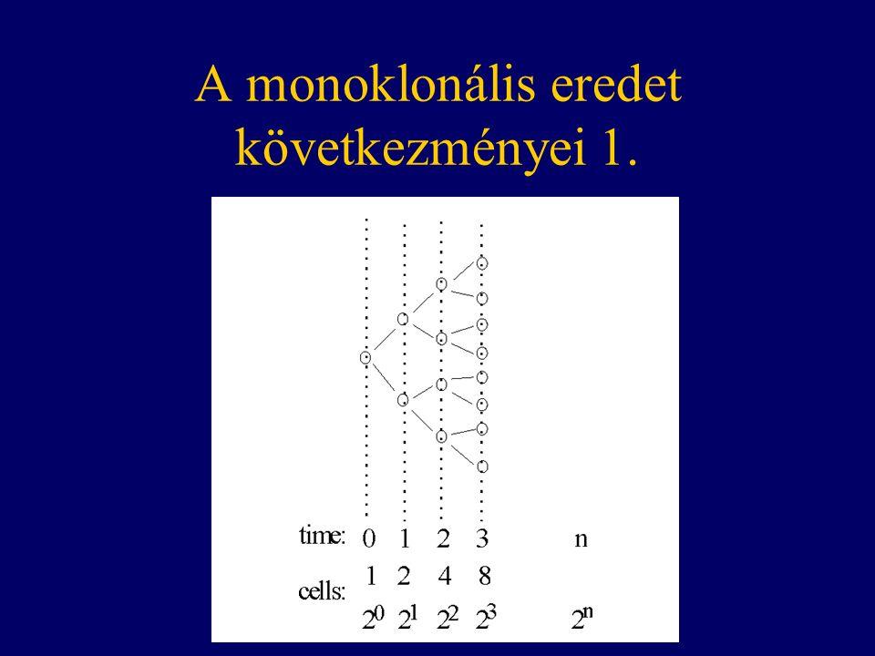 A monoklonális eredet következményei 1.