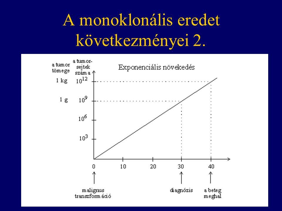 A monoklonális eredet következményei 2.