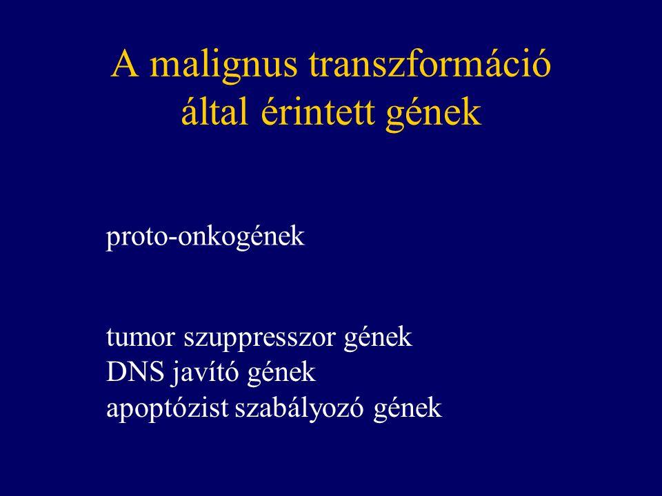 A genetikai tesztek problémái Mit tegyünk, ha pozitív.