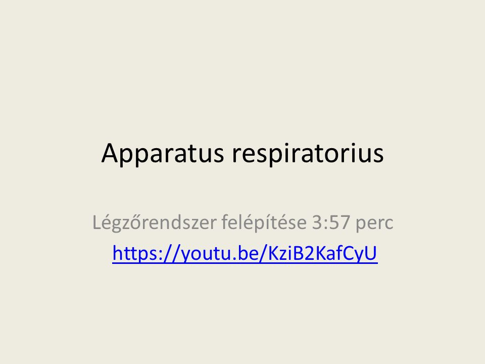 Apparatus respiratorius Légzőrendszer felépítése 3:57 perc https://youtu.be/KziB2KafCyU