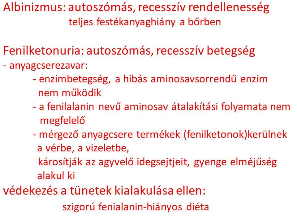 Albinizmus: autoszómás, recesszív rendellenesség teljes festékanyaghiány a bőrben Fenilketonuria: autoszómás, recesszív betegség - anyagcserezavar: -