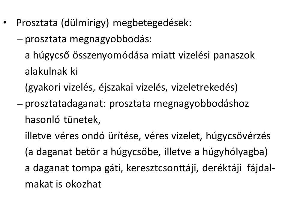 Prosztata (dülmirigy) megbetegedések: – prosztata megnagyobbodás: a húgycső összenyomódása miatt vizelési panaszok alakulnak ki (gyakori vizelés, éjsz