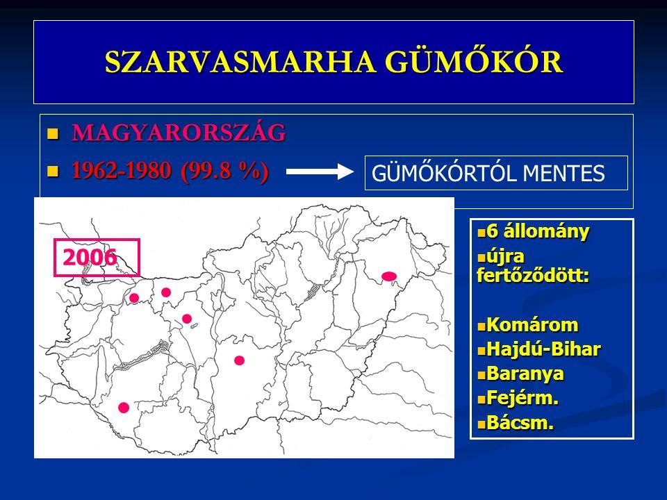 SZARVASMARHA GÜMŐKÓR MAGYARORSZÁG MAGYARORSZÁG 1962-1980 (99.8 %) 1962-1980 (99.8 %) 6 állomány 6 állomány újra fertőződött: újra fertőződött: Komárom