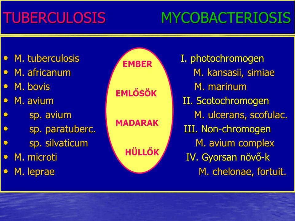 TUBERCULOSIS MYCOBACTERIOSIS M. tuberculosis I. photochromogen M. tuberculosis I. photochromogen M. africanum M. kansasii, simiae M. africanum M. kans