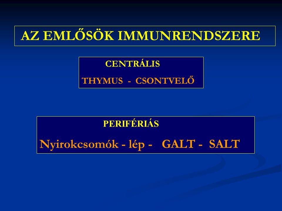 AZ EMLŐSÖK IMMUNRENDSZERE CENTRÁLIS THYMUS - CSONTVELŐ PERIFÉRIÁS Nyirokcsomók - lép - GALT - SALT