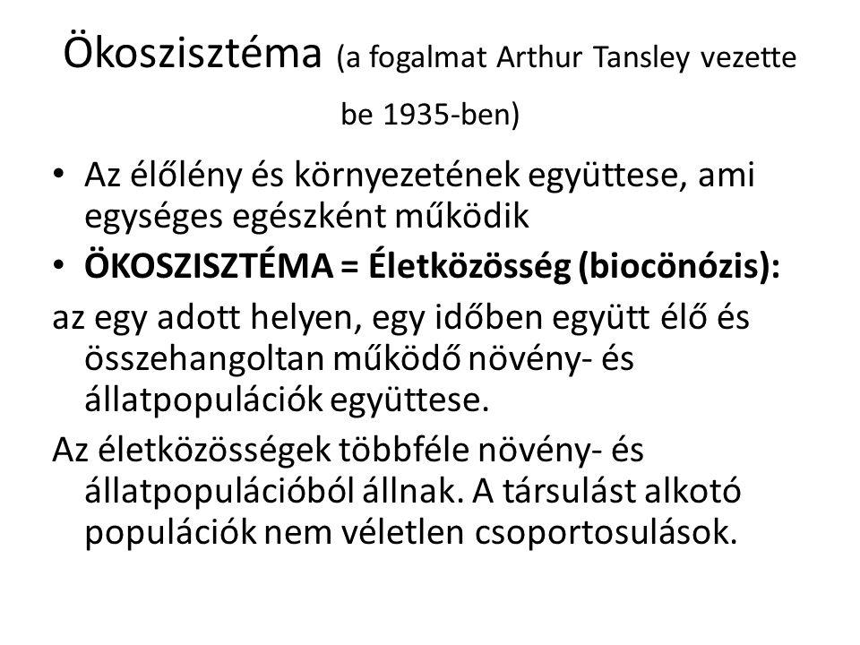 Ökoszisztéma (a fogalmat Arthur Tansley vezette be 1935-ben) Az élőlény és környezetének együttese, ami egységes egészként működik ÖKOSZISZTÉMA = Életközösség (biocönózis): az egy adott helyen, egy időben együtt élő és összehangoltan működő növény- és állatpopulációk együttese.