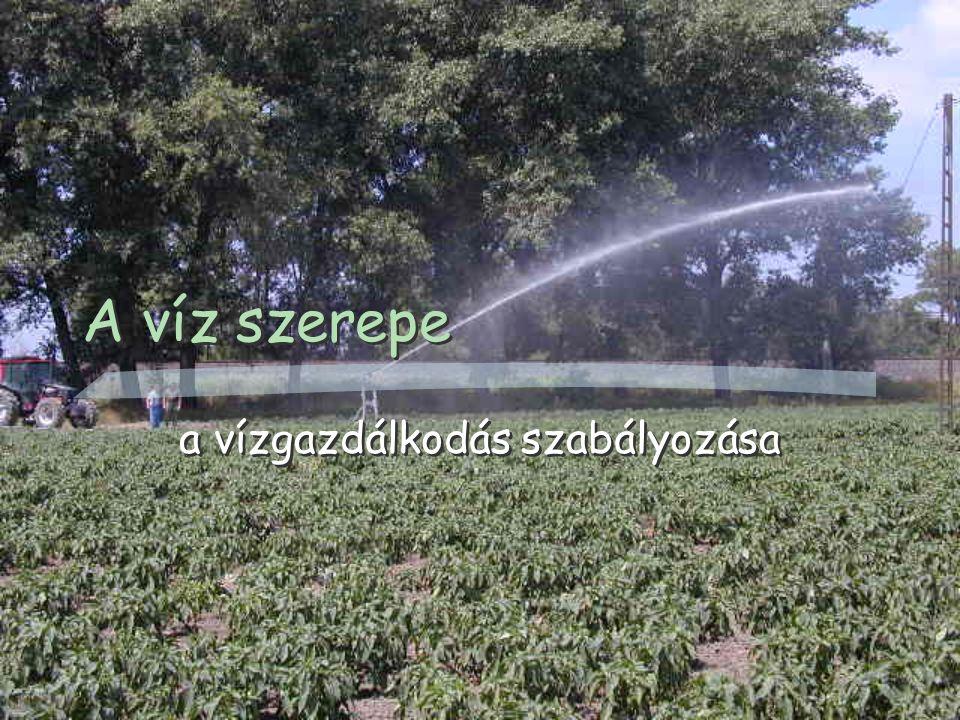 A víz szerepe a vízgazdálkodás szabályozása