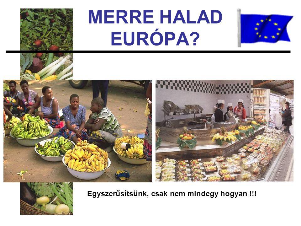 MERRE HALAD EURÓPA Egyszerűsítsünk, csak nem mindegy hogyan !!!