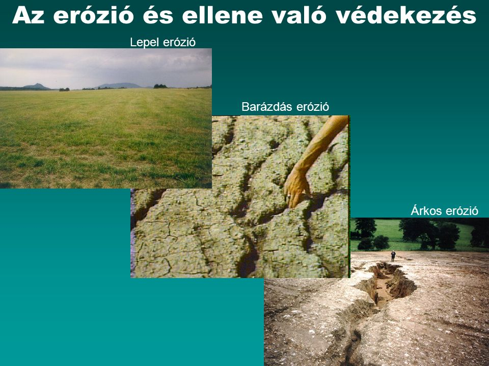 HEFOP 3.3.1.Az erózió elleni védekezés formái 7. Talajvédő termesztéstechnológia A.