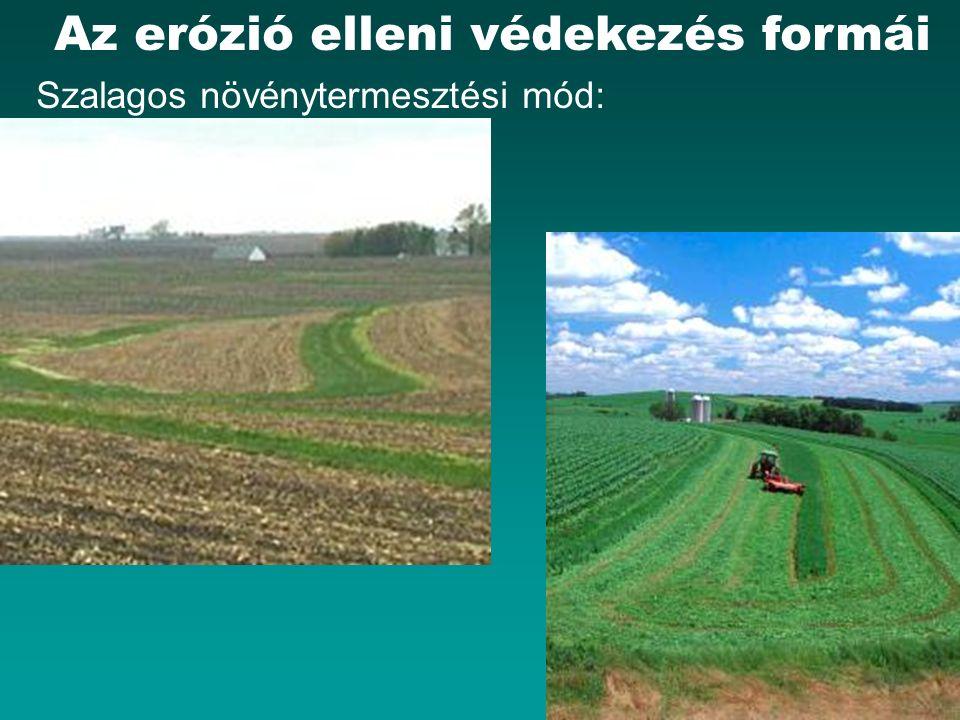 HEFOP 3.3.1. Az erózió elleni védekezés formái Szalagos növénytermesztési mód: