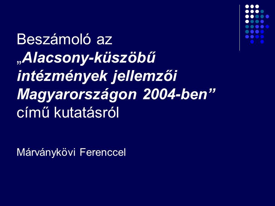 """Beszámoló az """"Alacsony-küszöbű intézmények jellemzői Magyarországon 2004-ben"""" című kutatásról Márványkövi Ferenccel"""