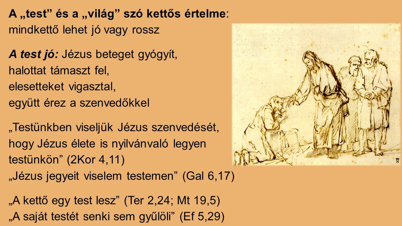 """A """"test és a """"világ szó kettős értelme: mindkettő lehet jó vagy rossz A test jó: Jézus beteget gyógyít, halottat támaszt fel, elesetteket vigasztal, együtt érez a szenvedőkkel """"Testünkben viseljük Jézus szenvedését, hogy Jézus élete is nyilvánvaló legyen testünkön (2Kor 4,11) """"Jézus jegyeit viselem testemen (Gal 6,17) """"A kettő egy test lesz (Ter 2,24; Mt 19,5) """"A saját testét senki sem gyűlöli (Ef 5,29)"""
