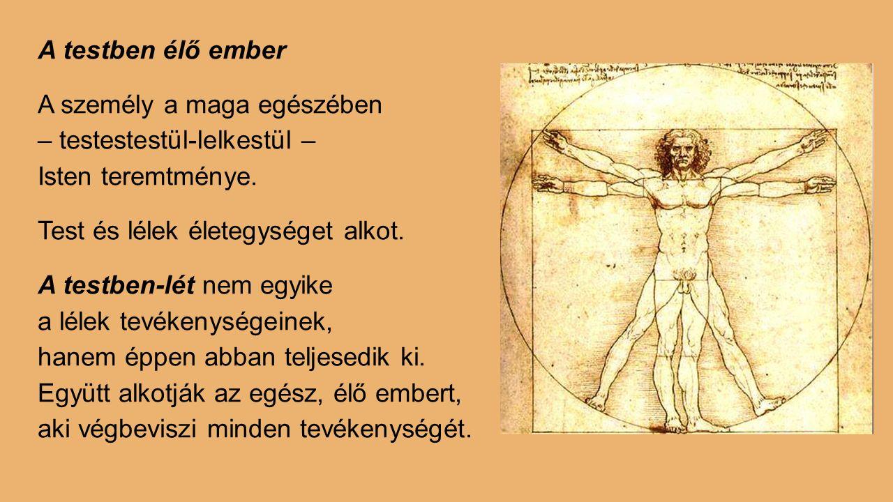 A testben élő ember A személy a maga egészében – testestestül-lelkestül – Isten teremtménye. Test és lélek életegységet alkot. A testben-lét nem egyik