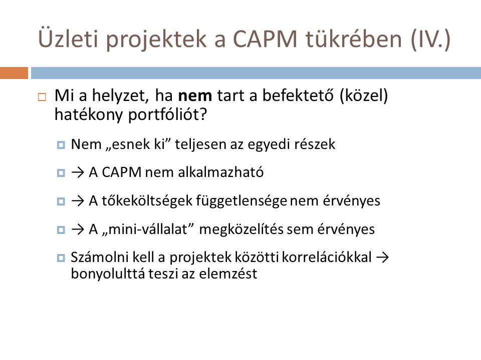 Üzleti projektek a CAPM tükrében (IV.)  Mi a helyzet, ha nem tart a befektető (közel) hatékony portfóliót.