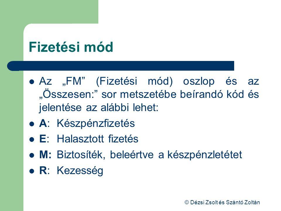 """© Dézsi Zsolt és Szántó Zoltán Fizetési mód Az """"FM"""" (Fizetési mód) oszlop és az """"Összesen:"""" sor metszetébe beírandó kód és jelentése az alábbi lehet:"""