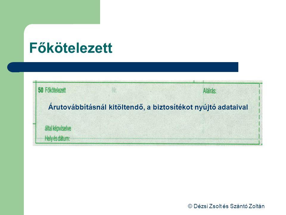 © Dézsi Zsolt és Szántó Zoltán Főkötelezett Árutovábbításnál kitöltendő, a biztosítékot nyújtó adataival